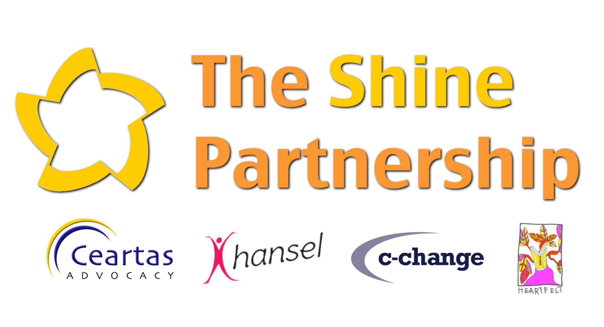 Shine Partnership Banner